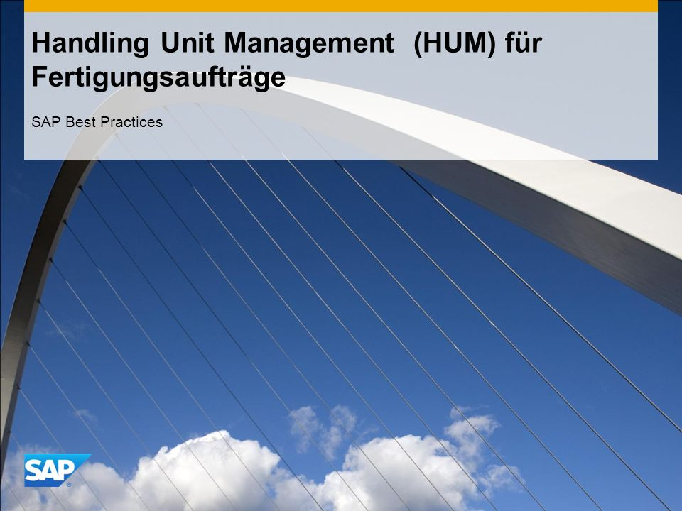 Handling Unit Management (HUM) für Fertigungsaufträge SAP Best Practices