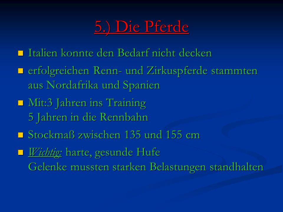 5.) Die Pferde Italien konnte den Bedarf nicht decken Italien konnte den Bedarf nicht decken erfolgreichen Renn- und Zirkuspferde stammten aus Nordafrika und Spanien erfolgreichen Renn- und Zirkuspferde stammten aus Nordafrika und Spanien Mit:3 Jahren ins Training 5 Jahren in die Rennbahn Mit:3 Jahren ins Training 5 Jahren in die Rennbahn Stockmaß zwischen 135 und 155 cm Stockmaß zwischen 135 und 155 cm Wichtig: harte, gesunde Hufe Gelenke mussten starken Belastungen standhalten Wichtig: harte, gesunde Hufe Gelenke mussten starken Belastungen standhalten