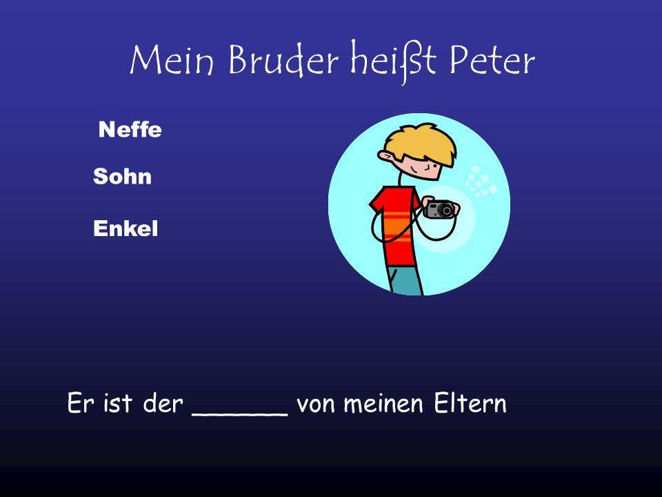 Mein Bruder heißt Peter Er ist der ______ von meinen Eltern Sohn Neffe Enkel