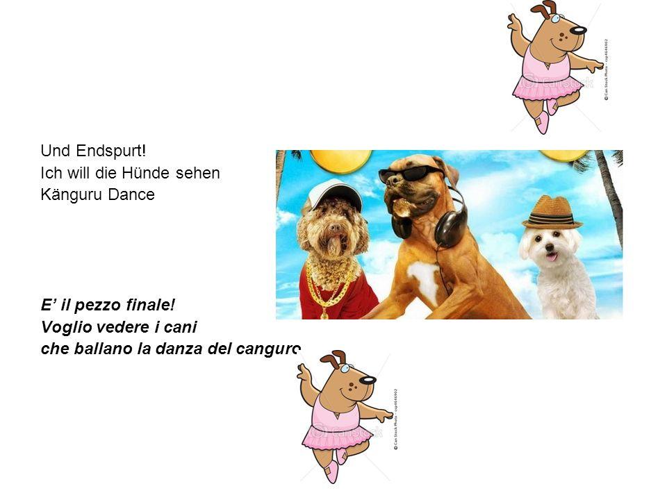 Und Endspurt! Ich will die Hünde sehen Känguru Dance E il pezzo finale! Voglio vedere i cani che ballano la danza del canguro.