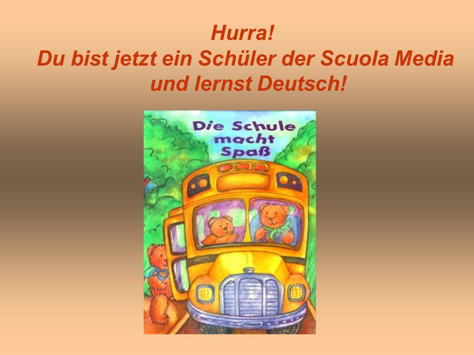 Hurra! Du bist jetzt ein Schüler der Scuola Media und lernst Deutsch!