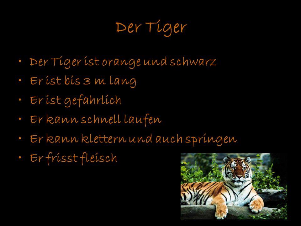 Der Tiger Der Tiger ist orange und schwarz Er ist bis 3 m lang Er ist gefahrlich Er kann schnell laufen Er kann klettern und auch springen Er frisst f