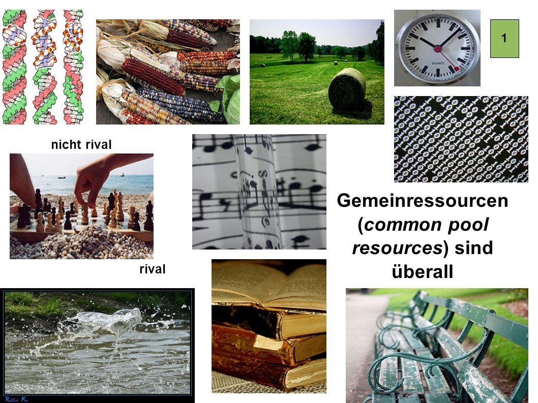 Silke.Helfrich@gmx.de www.commonsblog.de DANKE!