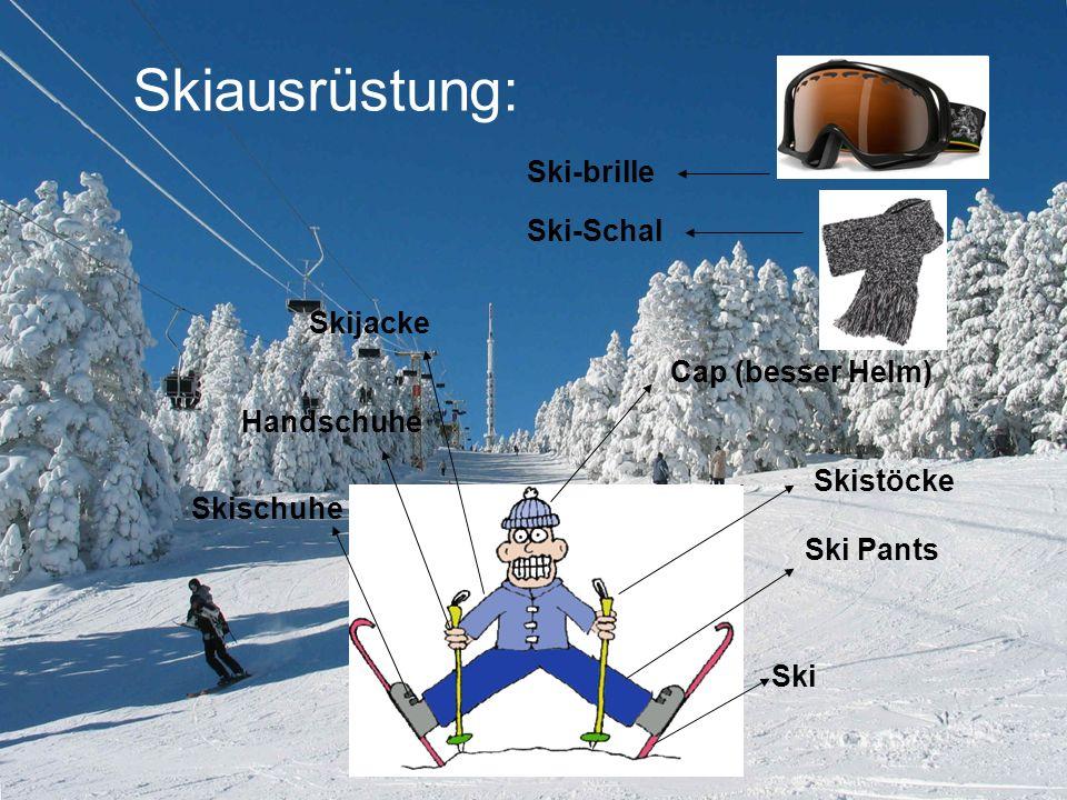 Cap (besser Helm) Ski Skistöcke Skischuhe Handschuhe Ski Pants Skiausrüstung: Skijacke Ski-brille Ski-Schal