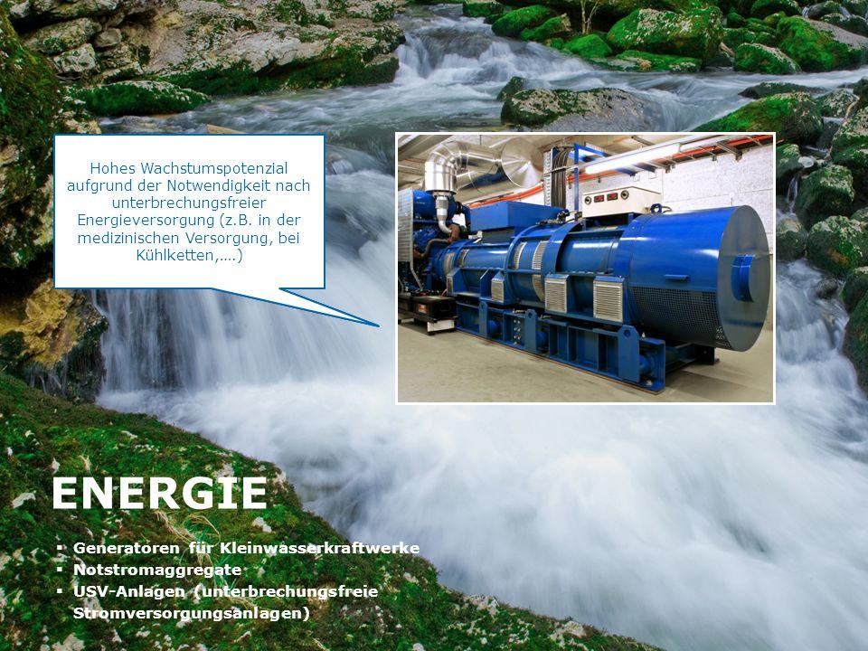 HTI High Tech Industries AG Börse Express Roadshow Graz, 9. November 2011 13 ENERGIE Generatoren für Kleinwasserkraftwerke Notstromaggregate USV-Anlag