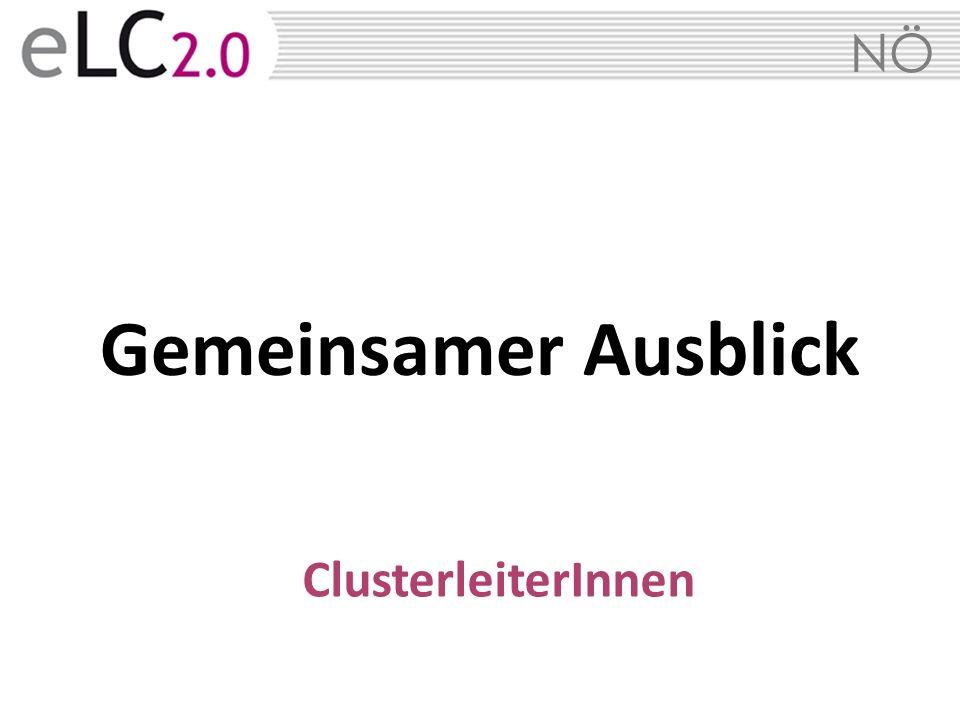NÖ Gemeinsamer Ausblick ClusterleiterInnen