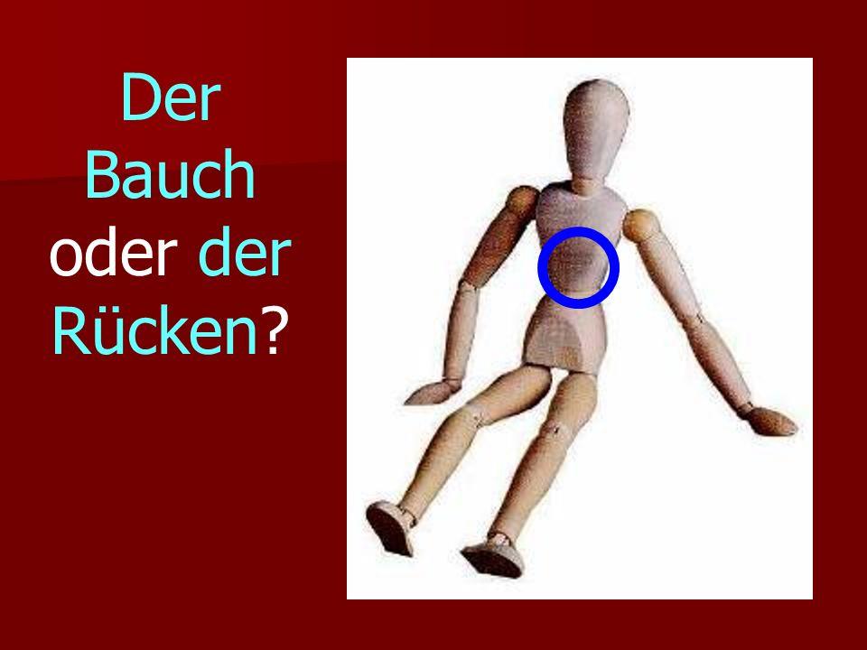 Der Bauch oder der Rücken