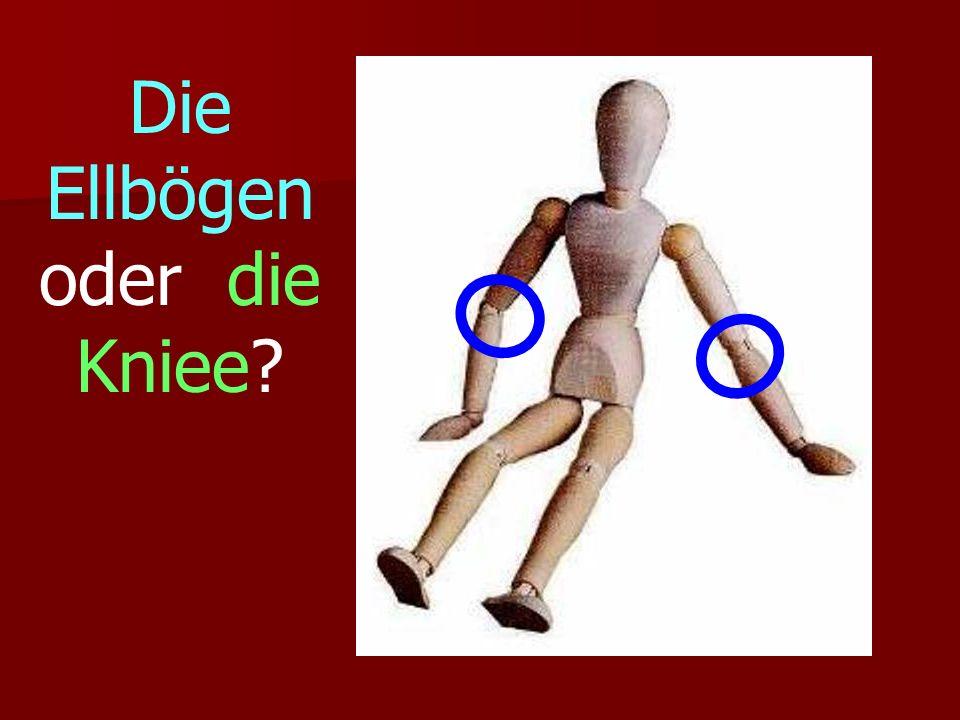 Die Ellbögen oder die Kniee