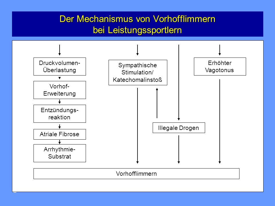 Herzzentrum Osnabrück-Bad Rothenfelde 6 Meta-Analyse zur relativen Häufigkeit von Vorhofflimmern bei Leistungssportlern Meta-Analyse zur relativen Häufigkeit von Vorhofflimmern bei Leistungssportlern Abdulla J et al, Europace, 2009, S.