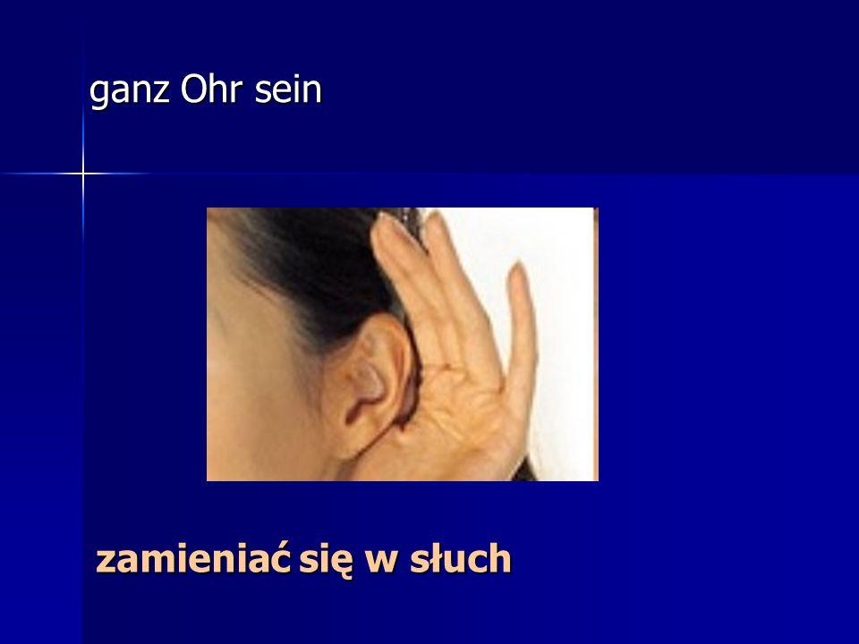 ganz Ohr sein zamieniać się w słuch