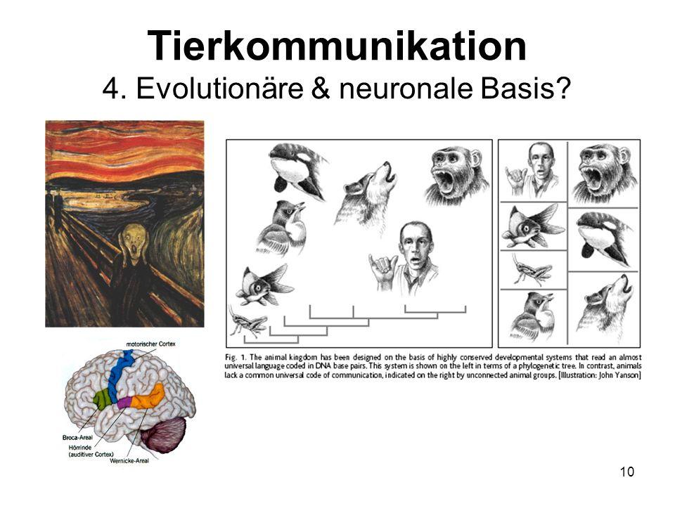 10 Tierkommunikation 4. Evolutionäre & neuronale Basis?