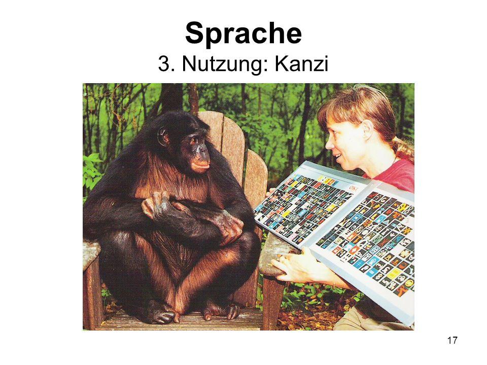 17 Sprache 3. Nutzung: Kanzi