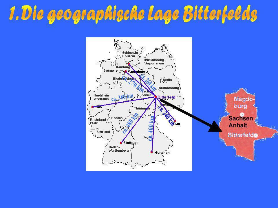 INHALTSANGABE 1.Die geographische Lage Bitterfelds 1.1 Bewertung der Lage Bitterfelds 2.Struktur und Entwicklung der Beschäftigung im Raum Bitterfeld