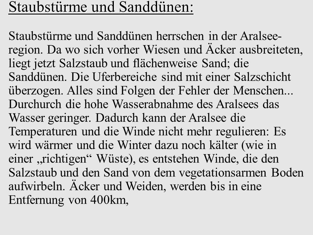 Staubstürme und Sanddünen: Staubstürme und Sanddünen herrschen in der Aralsee- region.
