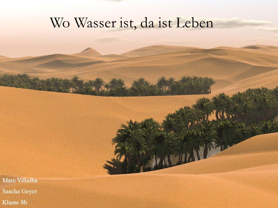Wo Wasser ist, da ist Leben Marc Villalba Sascha Geyer Klasse 8b
