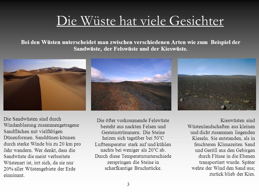 Die Wüste hat viele Gesichter Bei den Wüsten unterscheidet man zwischen verschiedenen Arten wie zum Beispiel der Sandwüste, der Felswüste und der Kies
