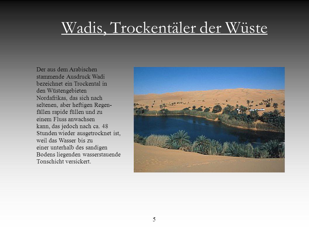 Wadis, Trockentäler der Wüste Der aus dem Arabischen stammende Ausdruck Wadi bezeichnet ein Trockental in den Wüstengebieten Nordafrikas, das sich nac