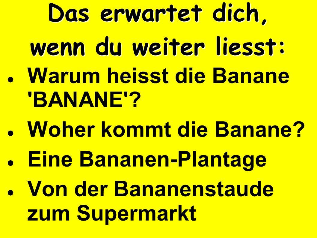 Das erwartet dich, wenn du weiter liesst: Warum heisst die Banane 'BANANE'? Woher kommt die Banane? Eine Bananen-Plantage Von der Bananenstaude zum Su