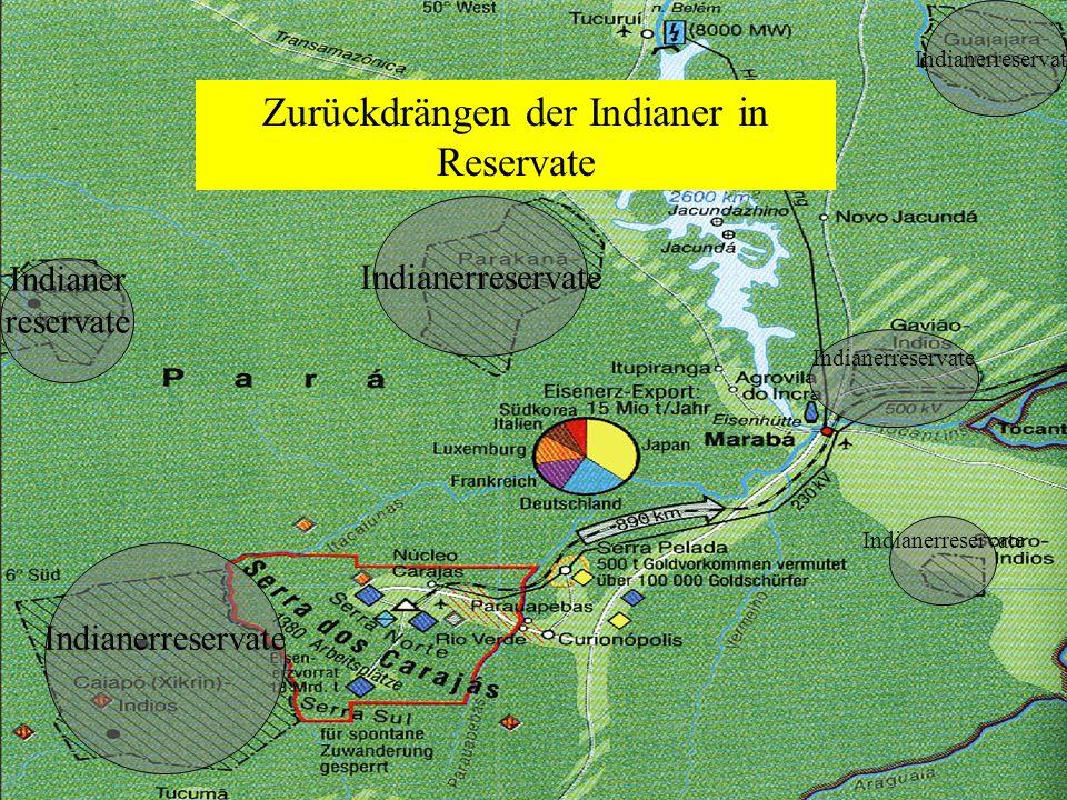 Rodungen Tucuri-Staudamm Nächstes Bild => Leertaste drücken Rodungen zerstören den Regenwald