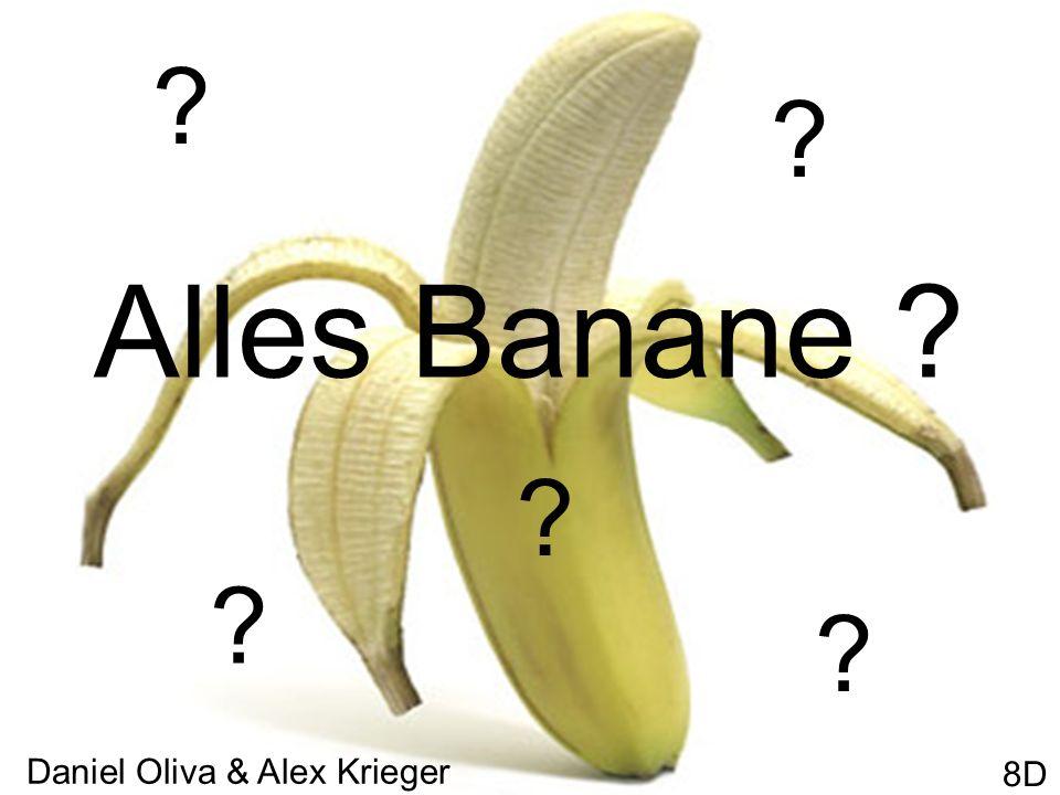 1.Die Bananenstaude 2.Die Plantagen, das beste Geschäft.