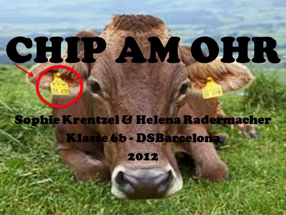 CHIP AM OHR Sophie Krentzel & Helena Radermacher Klasse 6b - DSBarcelona 2012
