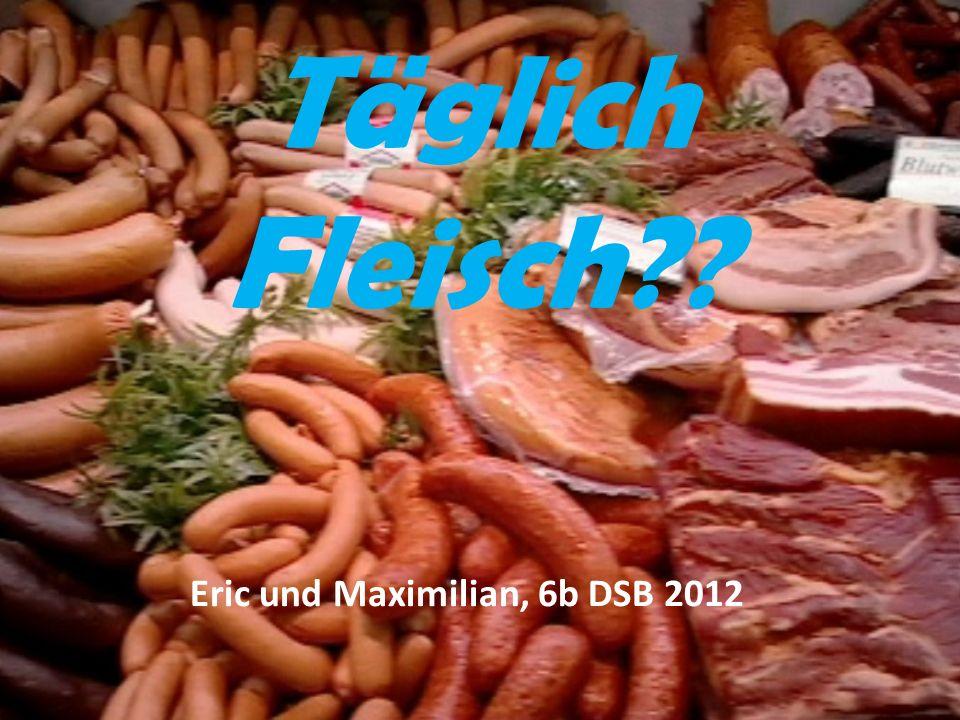 Täglich Fleisch?? Eric und Maximilian, 6b DSB 2012