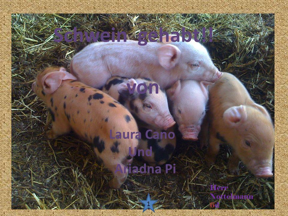 Schwein gehabt!! Laura Cano Und Ariadna Pi von Herr Nottelmann 6d 1