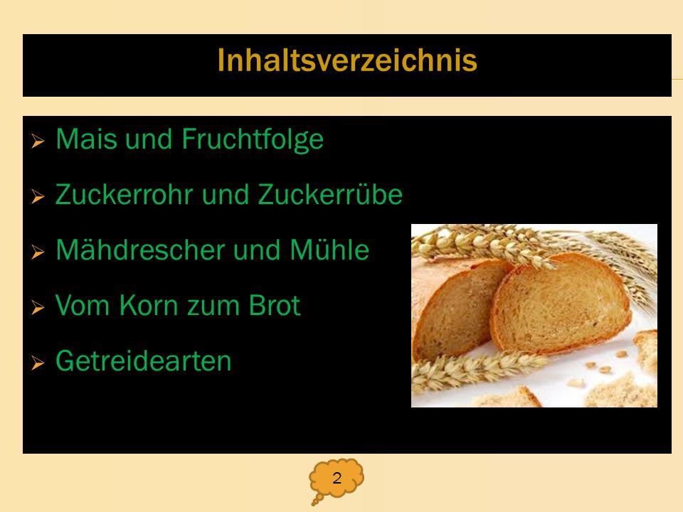 Inhaltsverzeichnis Mais und Fruchtfolge Zuckerrohr und Zuckerrübe Mähdrescher und Mühle Vom Korn zum Brot Getreidearten 2