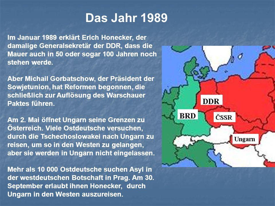 Das Jahr 1989 Im Januar 1989 erklärt Erich Honecker, der damalige Generalsekretär der DDR, dass die Mauer auch in 50 oder sogar 100 Jahren noch stehen