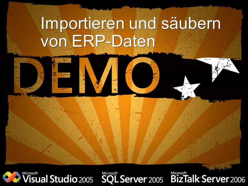 Importieren und säubern von ERP-Daten