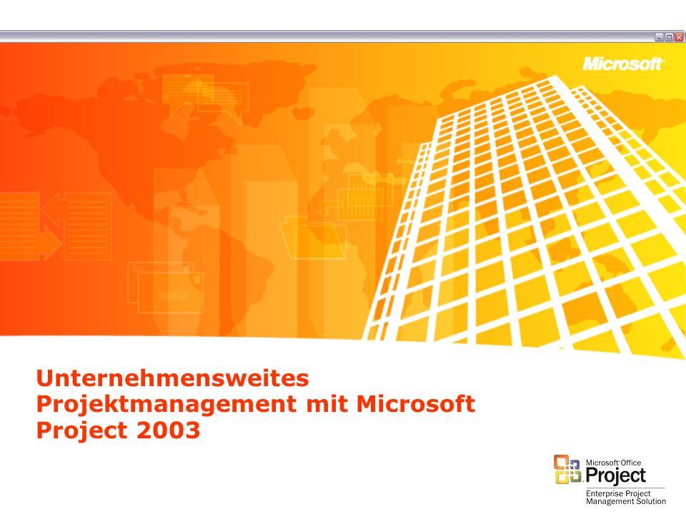 Unternehmensweites Projektmanagement mit Microsoft Project 2003