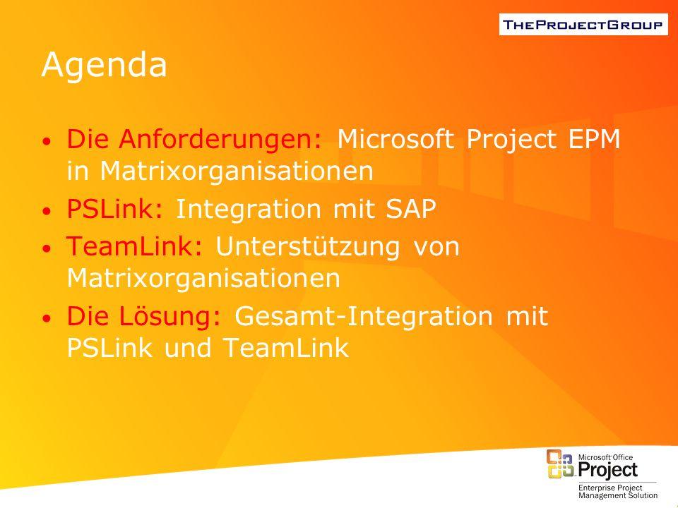 Agenda Die Anforderungen: Microsoft Project EPM in Matrixorganisationen PSLink: Integration mit SAP TeamLink: Unterstützung von Matrixorganisationen D