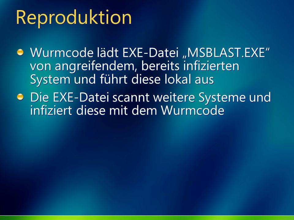 Reproduktion Wurmcode lädt EXE-Datei MSBLAST.EXE von angreifendem, bereits infizierten System und führt diese lokal aus Die EXE-Datei scannt weitere S