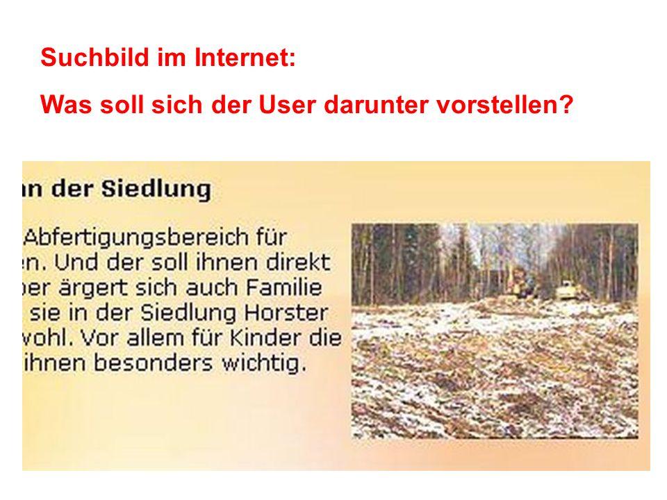 Suchbild im Internet: Was soll sich der User darunter vorstellen?