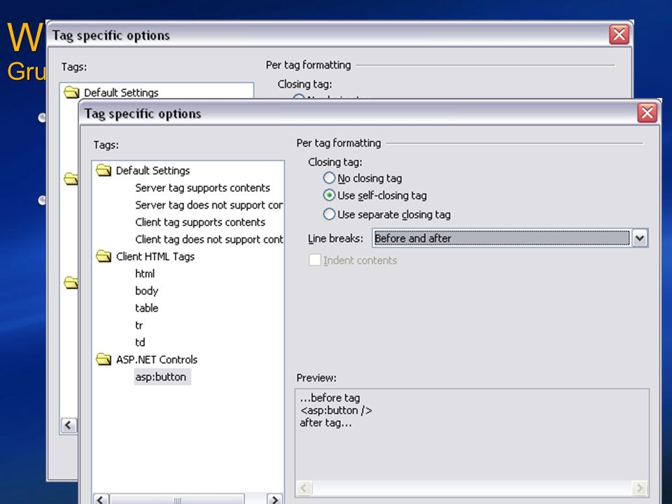 Web Development mit Visual Studio Grundlegende Verbesserungen in Whidbey Flexible Optionen für Formatierung von HTML-Quellcode Genaue Kontrolle über die Formattierung von HTML-Quellcode Optionale Reformatierung von Quellcode Verbesserte Behandlung von HTML-Quelldateien Der Editor verändert keinerlei Sourcode-Formatierungen mehr