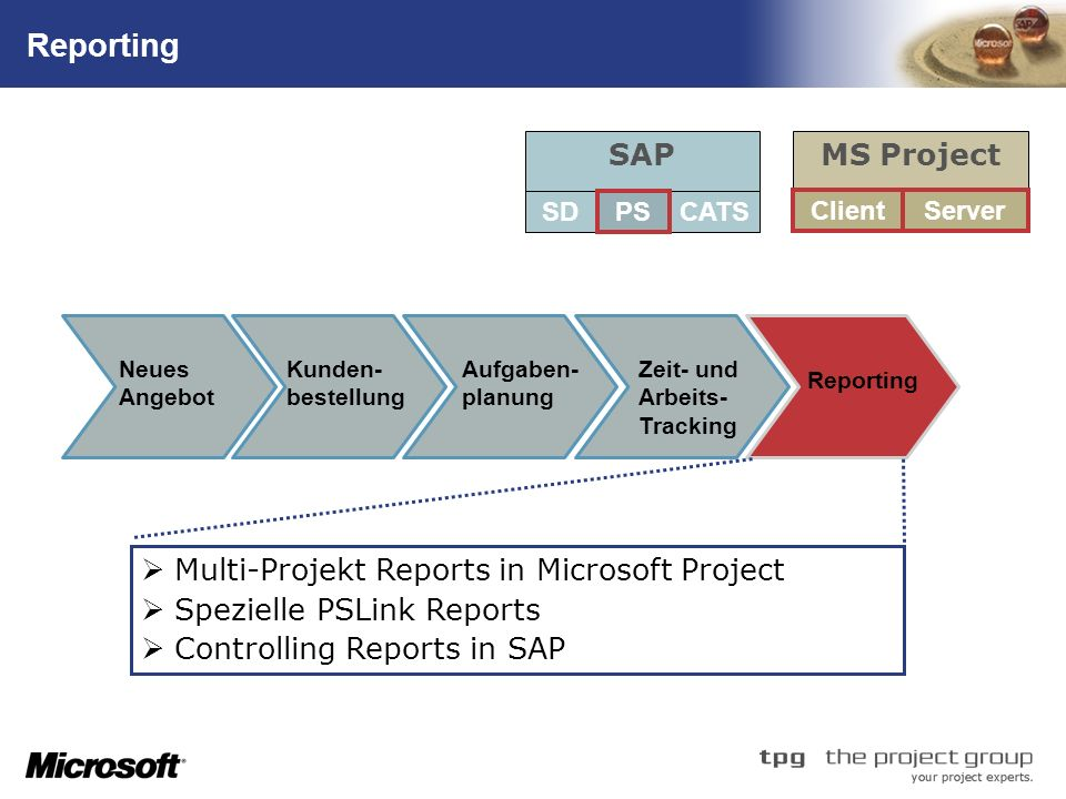 TM Reporting Multi-Projekt Reports in Microsoft Project Spezielle PSLink Reports Controlling Reports in SAP SAP SDCATS MS Project ServerClient PS Aufg
