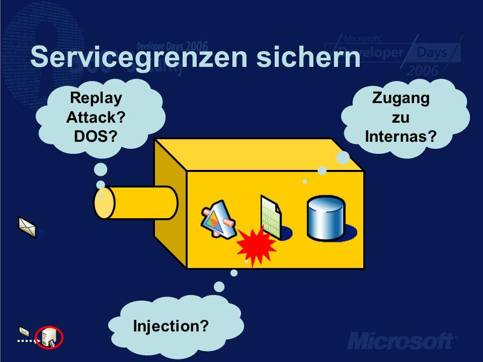 Servicegrenzen sichern Replay Attack? DOS? Injection? Zugang zu Internas?