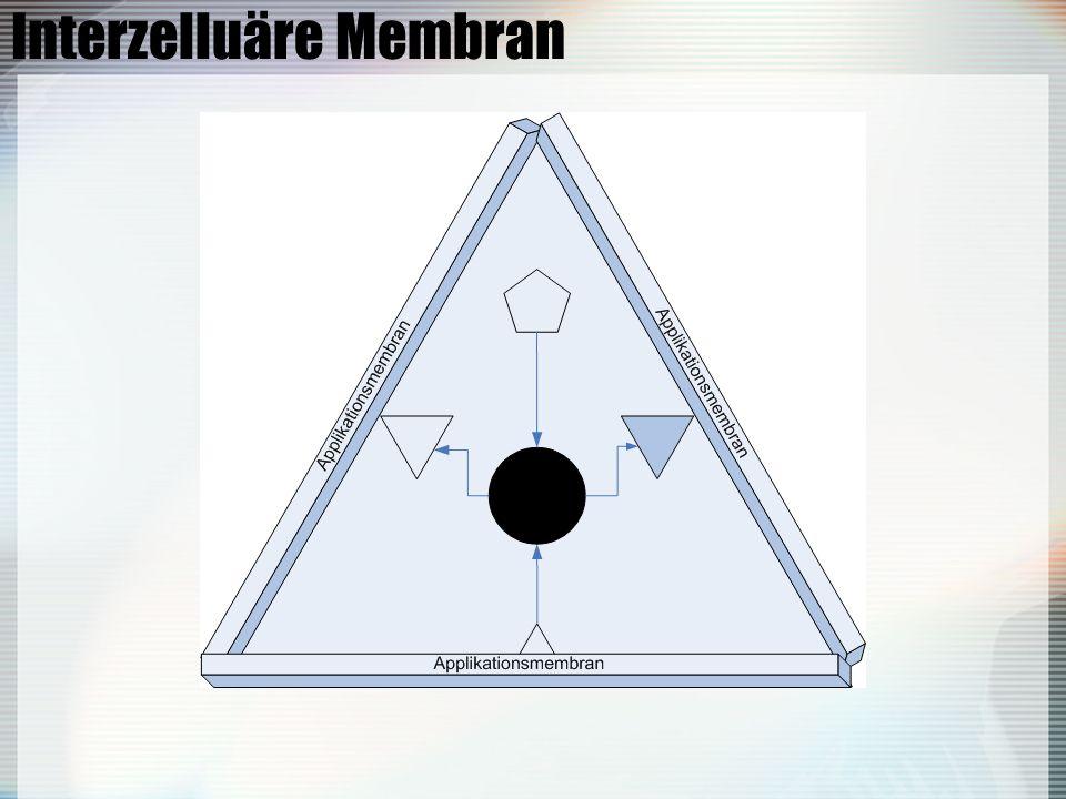 Interzelluäre Membran