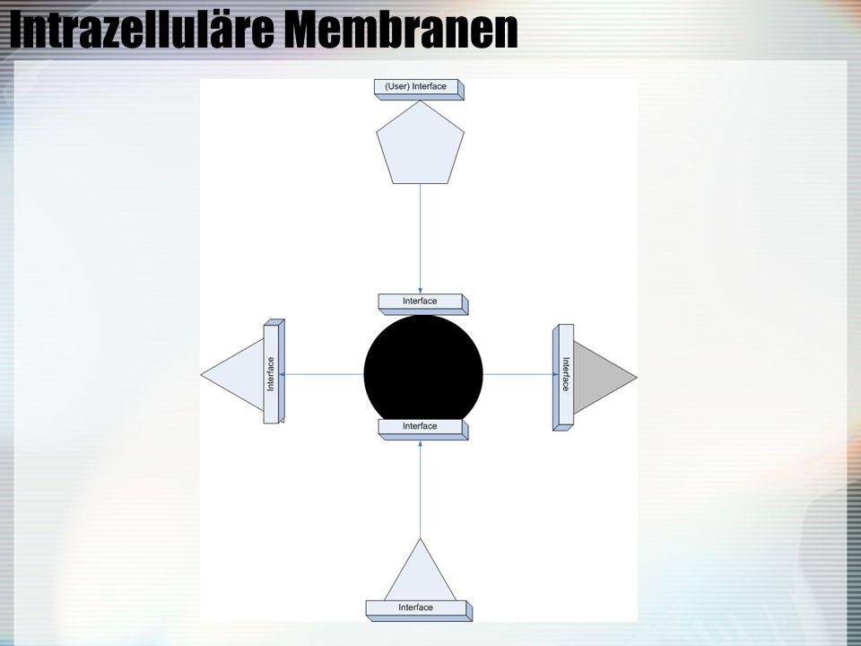 Intrazelluläre Membranen