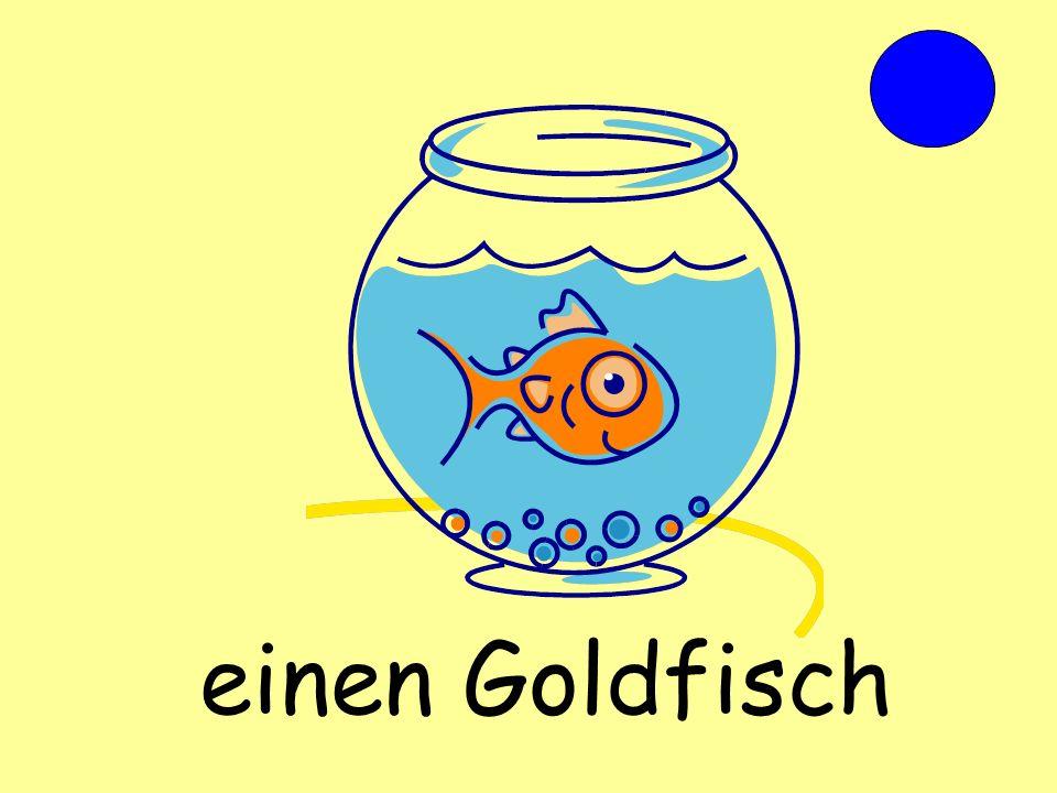 einen Goldfisch