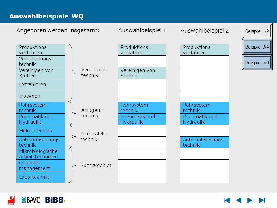 Auswahlbeispiele WQ Produktions- verfahren Verfahrens- technik Anlagen- technik Prozessleit- technik Spezialgebiet Beispiel 1/2 Beispiel 3/4 Beispiel