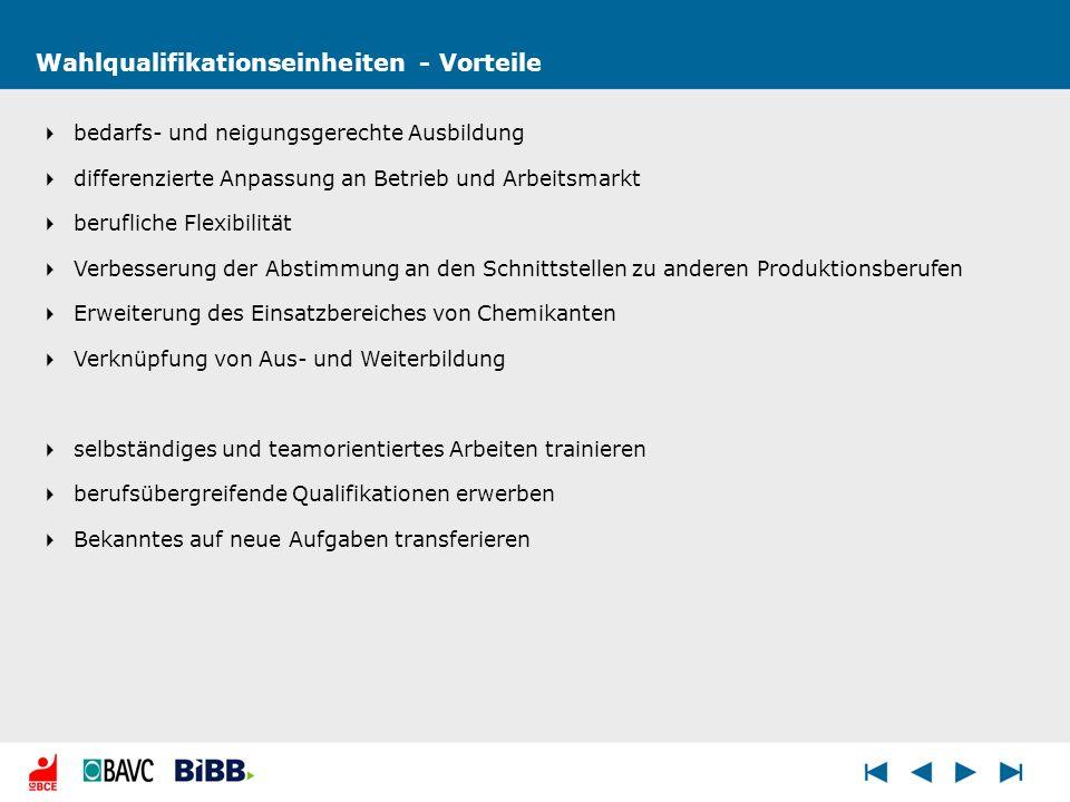 Wahlqualifikationseinheiten - Vorteile bedarfs- und neigungsgerechte Ausbildung differenzierte Anpassung an Betrieb und Arbeitsmarkt berufliche Flexib