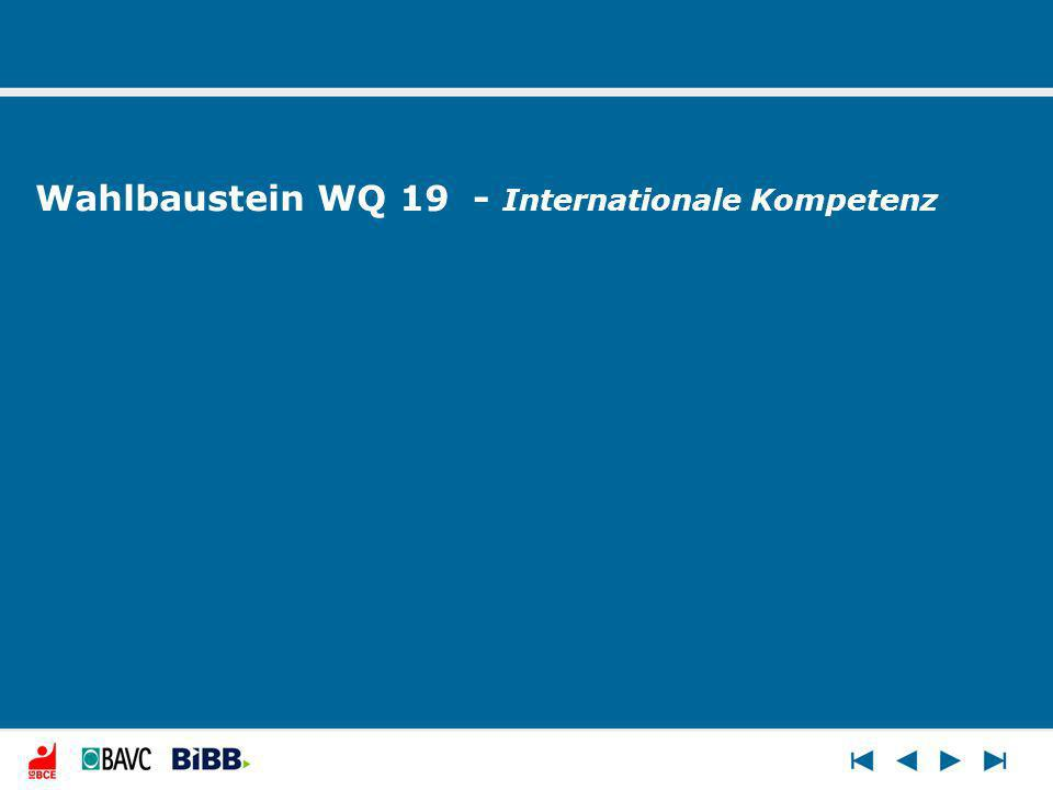 Wahlbaustein WQ 19 - Internationale Kompetenz