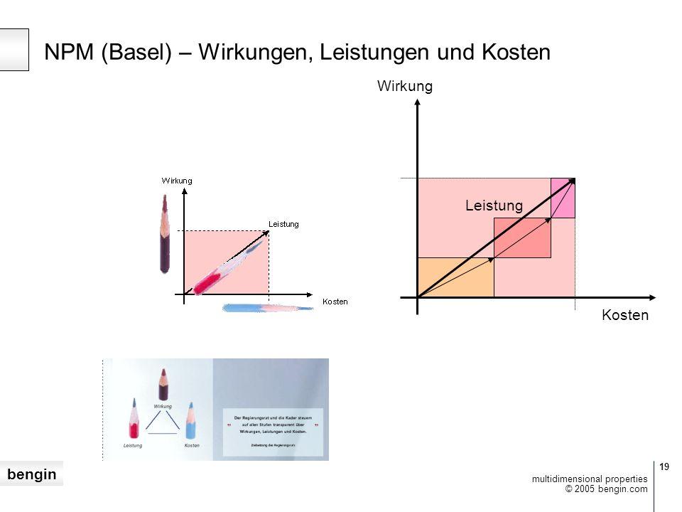 bengin 19 © 2005 bengin.com multidimensional properties NPM (Basel) – Wirkungen, Leistungen und Kosten Wirkung Kosten Leistung