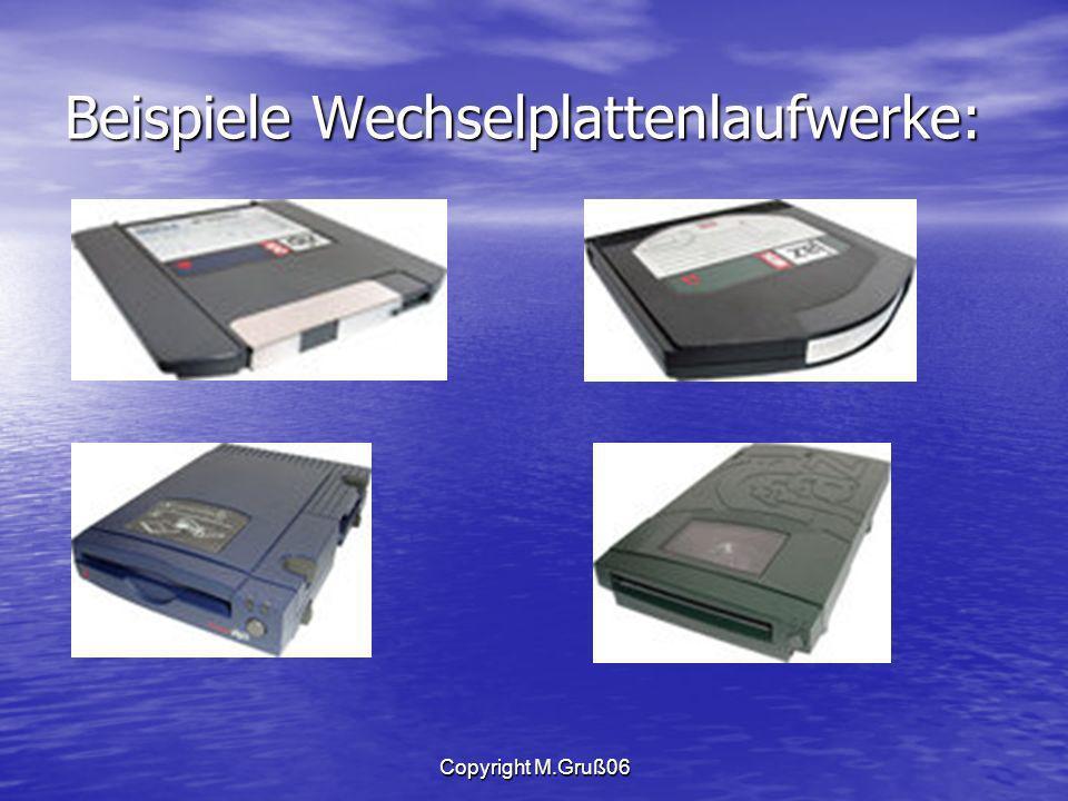 Copyright M.Gruß06 Beispiele Wechselplattenlaufwerke: