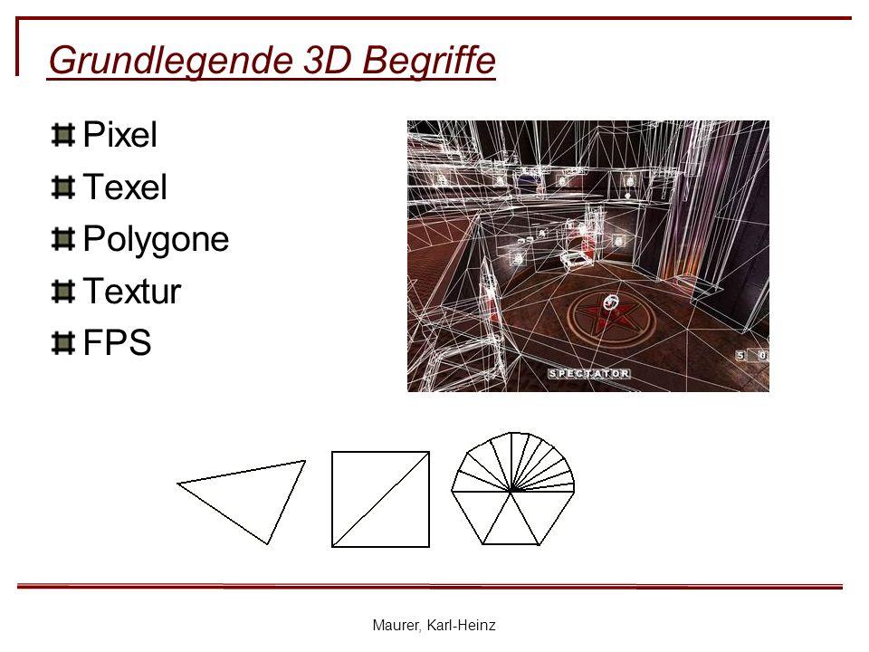 Maurer, Karl-Heinz Grundlegende 3D Begriffe Pixel Texel Polygone Textur FPS