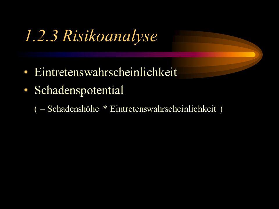 1.2.3 Risikoanalyse Eintretenswahrscheinlichkeit Schadenspotential ( = Schadenshöhe * Eintretenswahrscheinlichkeit )