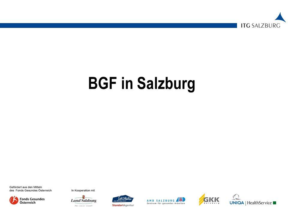 05.01.2014   Seite 2 Ausgangssituation in Salzburg 82,5 % Kleinstunternehmen; 14,3 % Kleinunternehmen Bereits Unterstützungsleistungen vorhanden (z.B.