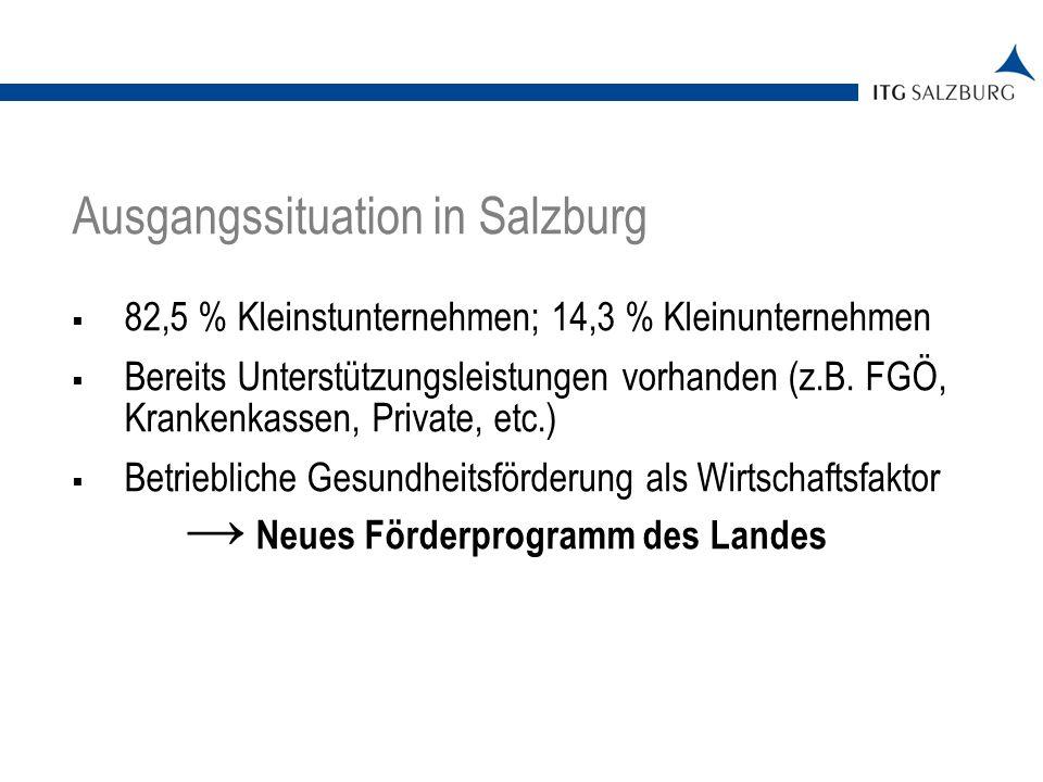 05.01.2014 | Seite 2 Ausgangssituation in Salzburg 82,5 % Kleinstunternehmen; 14,3 % Kleinunternehmen Bereits Unterstützungsleistungen vorhanden (z.B.