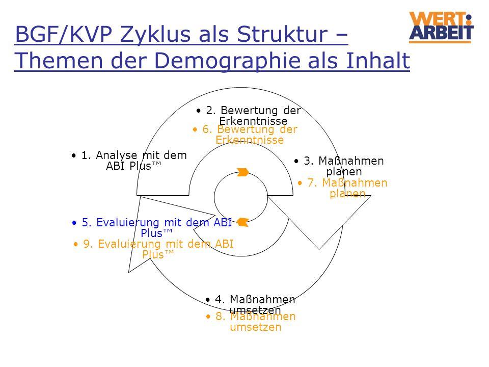 1. Analyse mit dem ABI Plus 3. Maßnahmen planen 4. Maßnahmen umsetzen 2. Bewertung der Erkenntnisse 5. Evaluierung mit dem ABI Plus 6. Bewertung der E